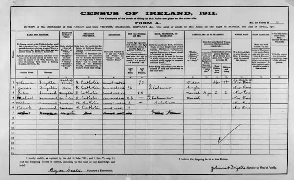 Census 1911 Johanna Roche